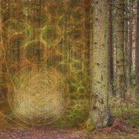 Unsere feinstoffliche Lebensrealität - 2.-5. Dimension